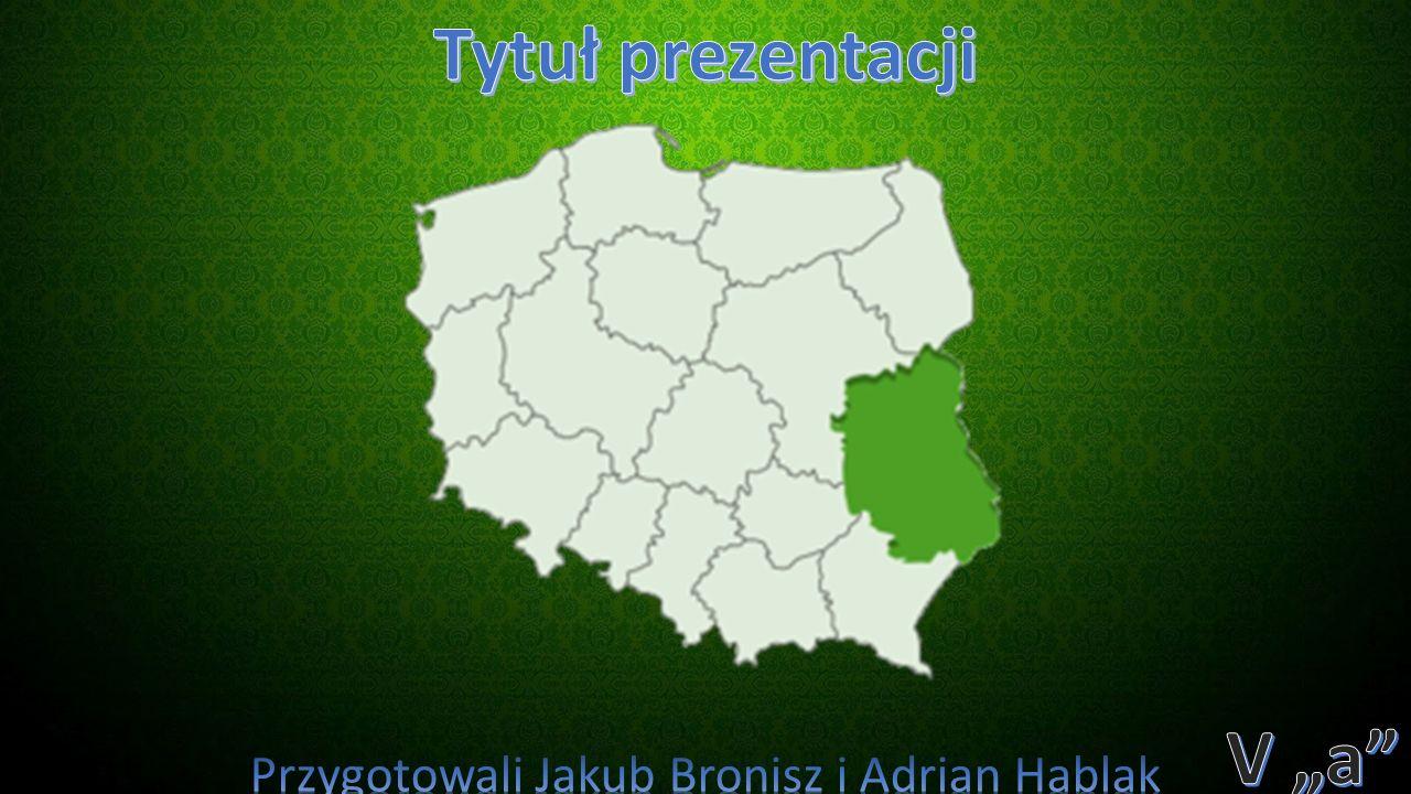 Wyżyna Lubelska – makroregion geograficzny w południowo-wschodniej części Polski, rozciągający się pomiędzy doliną Wisły na zachodzie i Bugu na wschodzie.