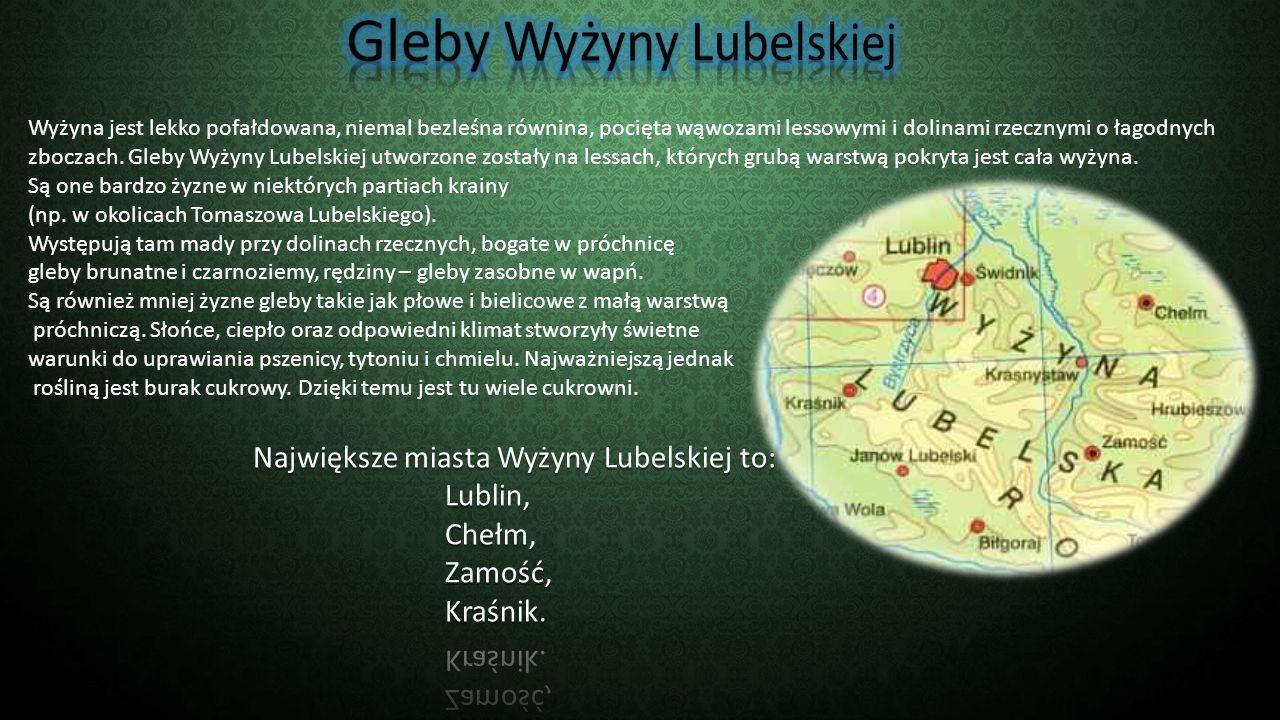 Lublin – miasto na prawach powiatu, stolica województwa lubelskiego.