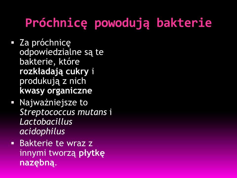 Próchnicę powodują bakterie  Za próchnicę odpowiedzialne są te bakterie, które rozkładają cukry i produkują z nich kwasy organiczne  Najważniejsze to Streptococcus mutans i Lactobacillus acidophilus  Bakterie te wraz z innymi tworzą płytkę nazębną.