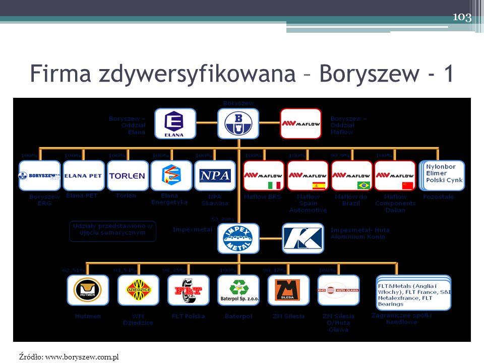 Firma zdywersyfikowana – Boryszew - 1 103 Źródło: www.boryszew.com.pl