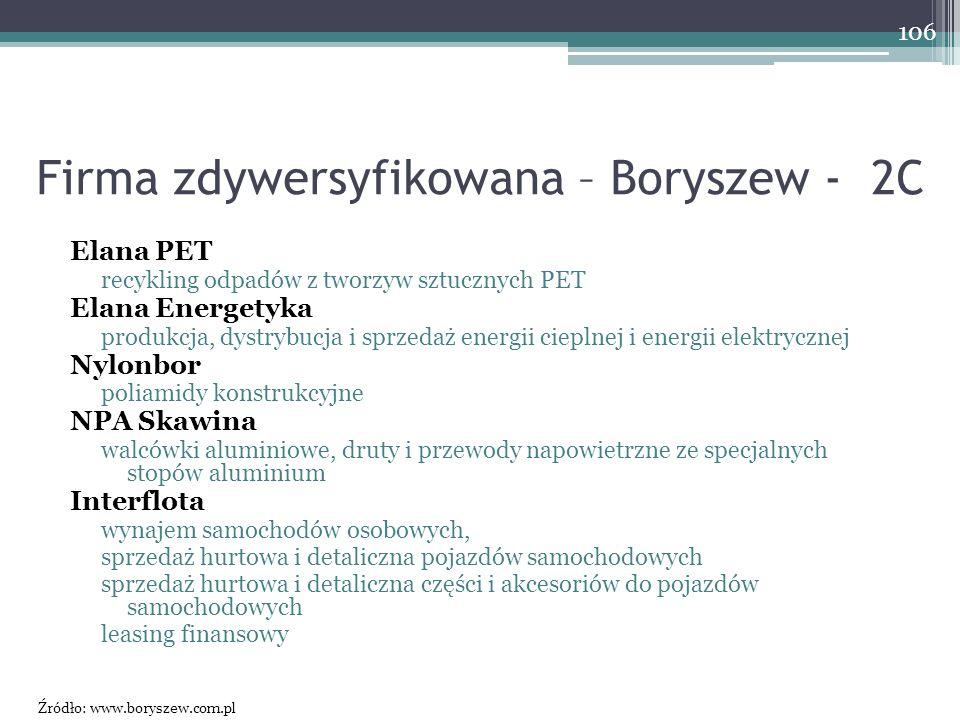 Firma zdywersyfikowana – Boryszew - 2C Elana PET recykling odpadów z tworzyw sztucznych PET Elana Energetyka produkcja, dystrybucja i sprzedaż energii