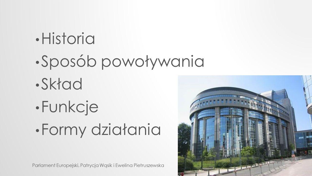 Historia Sposób powoływania Skład Funkcje Formy działania Parlament Europejski, Patrycja Wąsik i Ewelina Pietruszewska