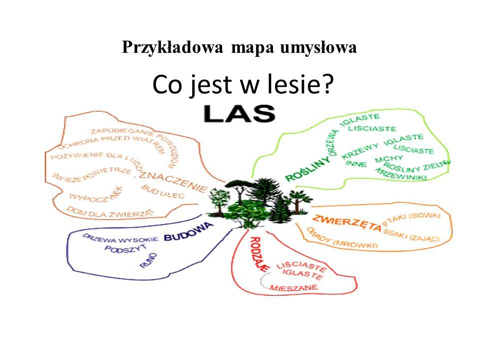 Przykładowa mapa umysłowa Co jest w lesie?