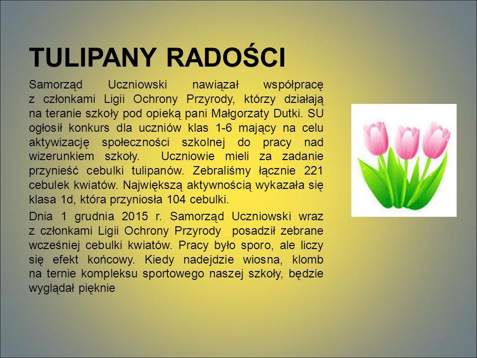 TULIPANY RADOŚCI Samorząd Uczniowski nawiązał współpracę z członkami Ligii Ochrony Przyrody, którzy działają na teranie szkoły pod opieką pani Małgorzaty Dutki.