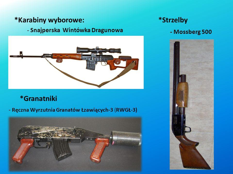 *Karabinki automatyczne: - AKM - HK G36 - HK416