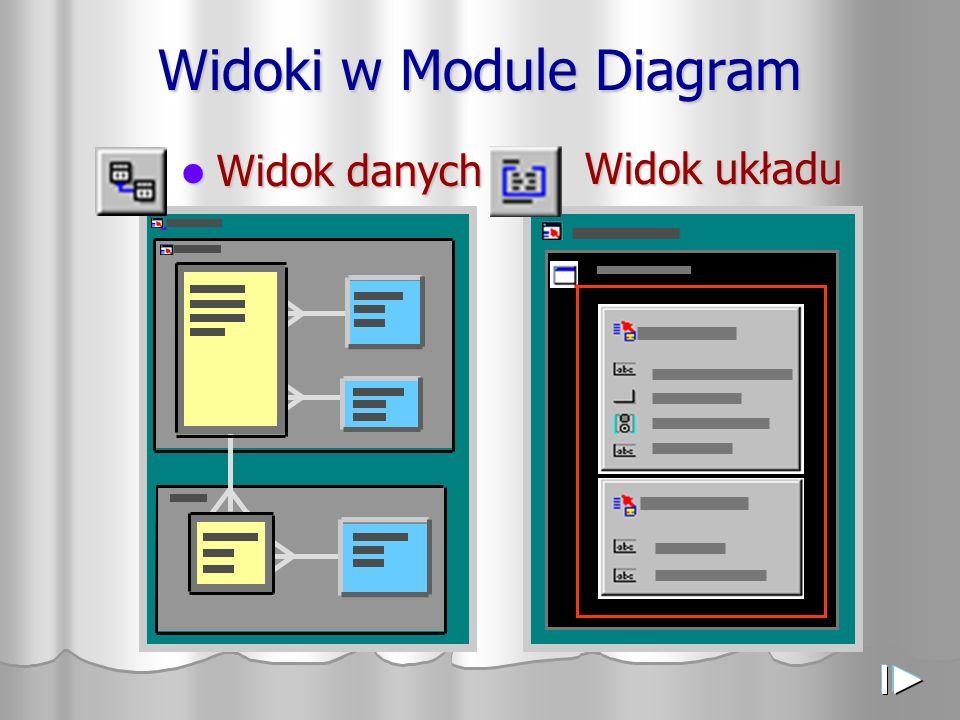 Widoki w Module Diagram Widok danych Widok danych Widok układu