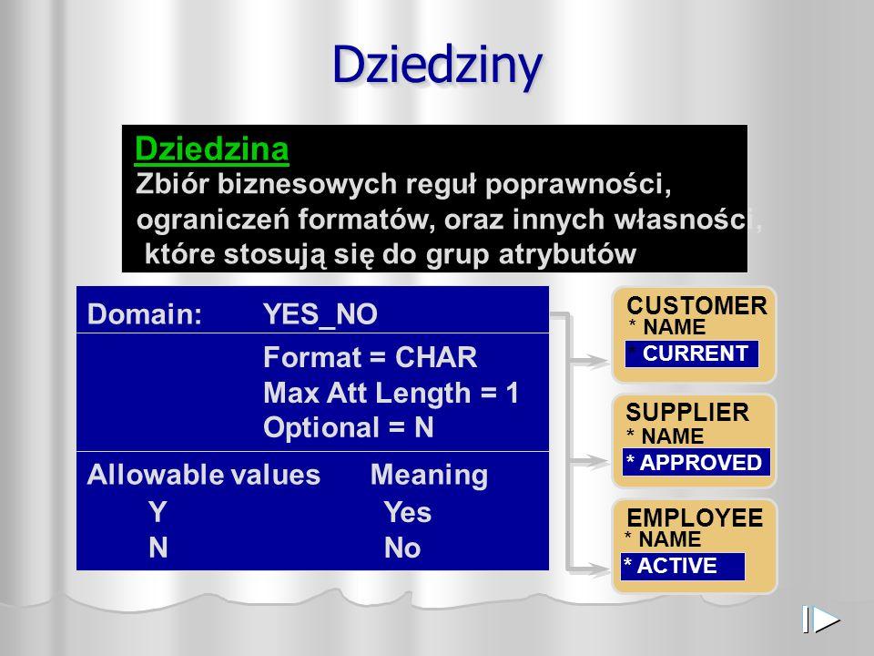DziedzinyDziedziny Zbiór biznesowych reguł poprawności, ograniczeń formatów, oraz innych własności, które stosują się do grup atrybutów Dziedzina CUSTOMER * NAME * CURRENT SUPPLIER * NAME * APPROVED EMPLOYEE * NAME * ACTIVE Format = CHAR Max Att Length = 1 Allowable values Meaning YNYN Yes No Domain: Optional = N YES_NO
