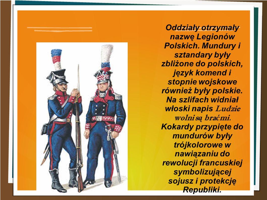 Oddziały otrzymały nazwę Legionów Polskich. Mundury i sztandary były zbliżone do polskich, język komend i stopnie wojskowe również były polskie. Na sz