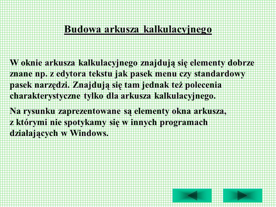 Budowa arkusza kalkulacyjnego W oknie arkusza kalkulacyjnego znajdują się elementy dobrze znane np. z edytora tekstu jak pasek menu czy standardowy pa