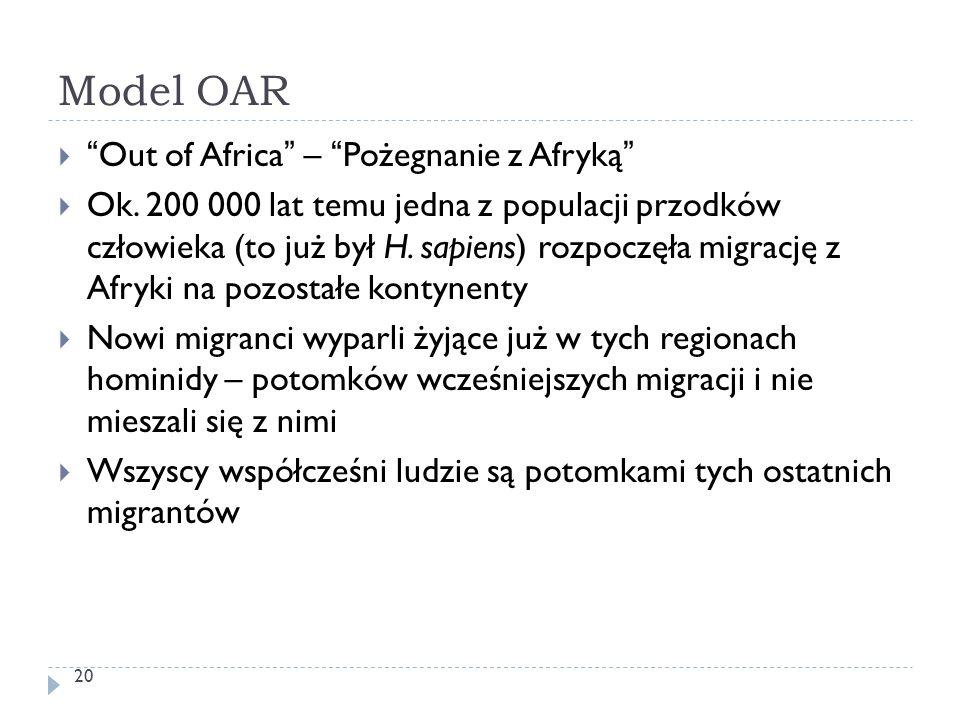 """Model OAR 20  """"Out of Africa"""" – """"Pożegnanie z Afryką""""  Ok. 200 000 lat temu jedna z populacji przodków człowieka (to już był H. sapiens) rozpoczęła"""