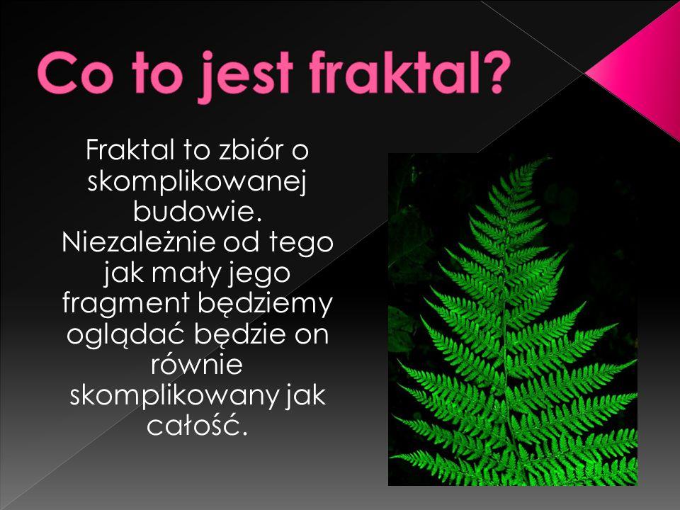 Fraktal to zbiór o skomplikowanej budowie.