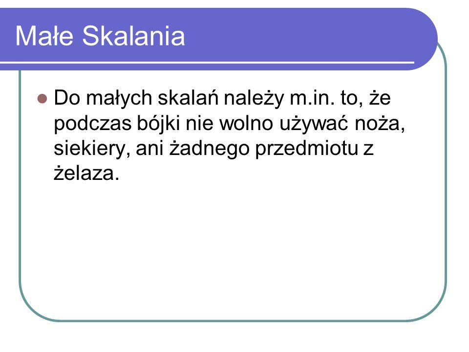 Małe Skalania Do małych skalań należy m.in.