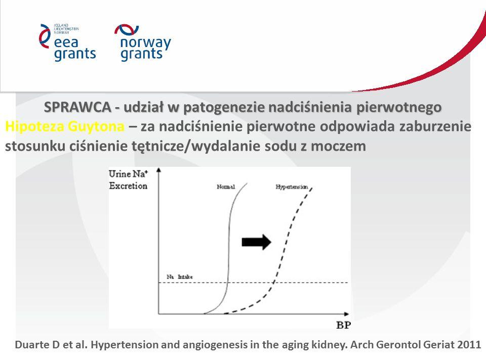 SPRAWCA - udział w patogenezie nadciśnienia pierwotnego Hipoteza Guytona – za nadciśnienie pierwotne odpowiada zaburzenie stosunku ciśnienie tętnicze/