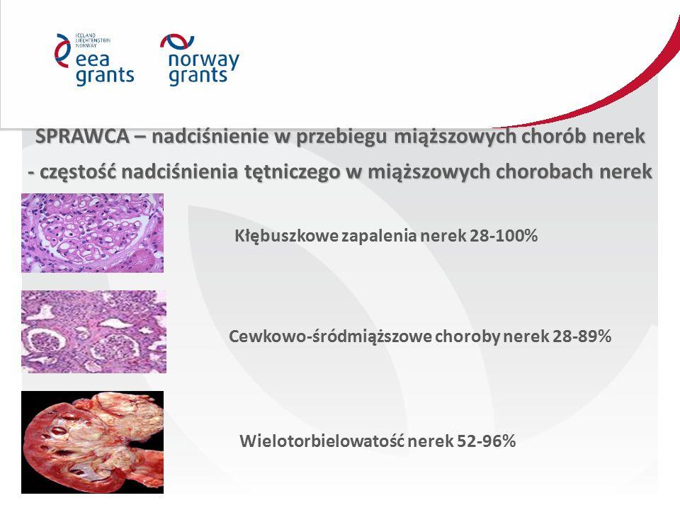 SPRAWCA – nadciśnienie w przebiegu miąższowych chorób nerek - częstość nadciśnienia tętniczego w miąższowych chorobach nerek Kłębuszkowe zapalenia nerek 28-100% Cewkowo-śródmiąższowe choroby nerek 28-89% Wielotorbielowatość nerek 52-96%