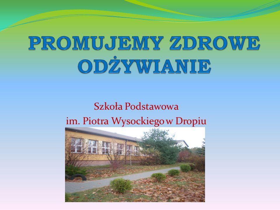 Szkoła Podstawowa im. Piotra Wysockiego w Dropiu