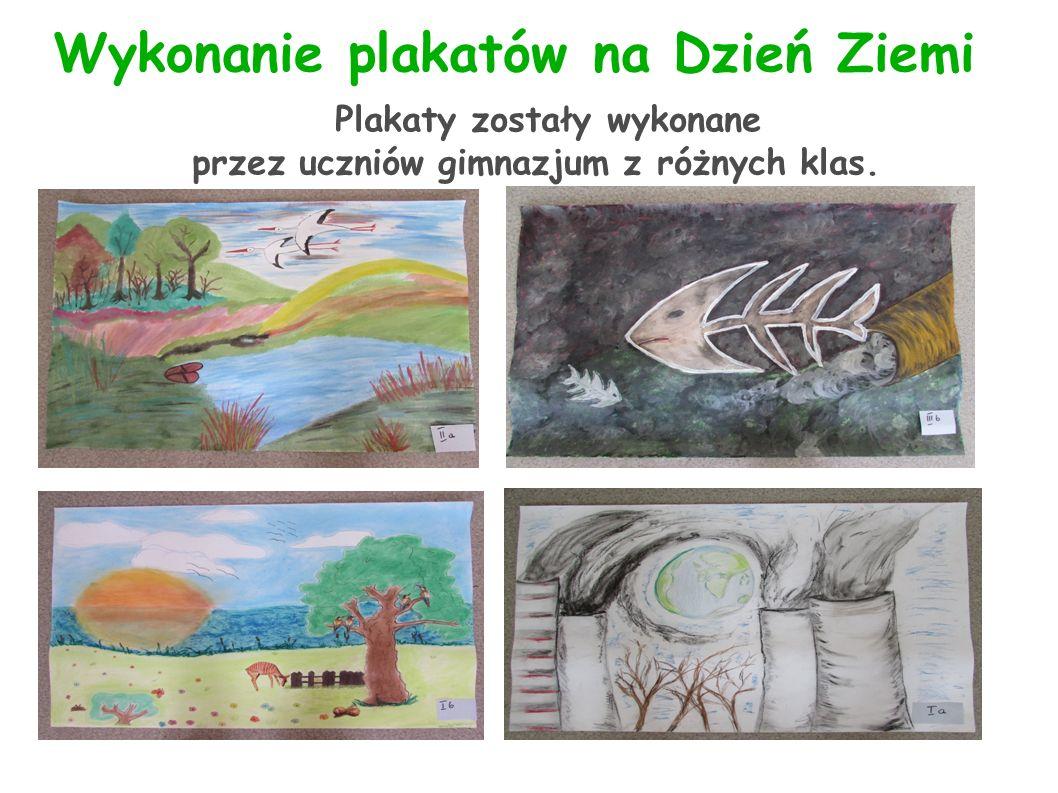 Wykonanie plakatów na Dzień Ziemi Plakaty zostały wykonane przez uczniów gimnazjum z różnych klas.