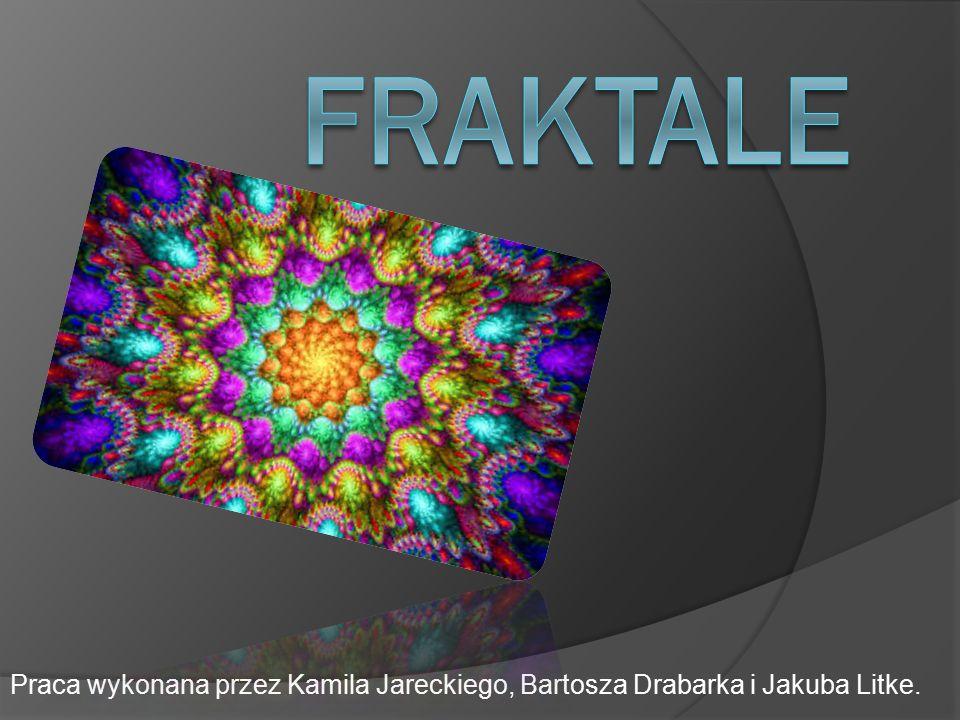 Praca wykonana przez Kamila Jareckiego, Bartosza Drabarka i Jakuba Litke.