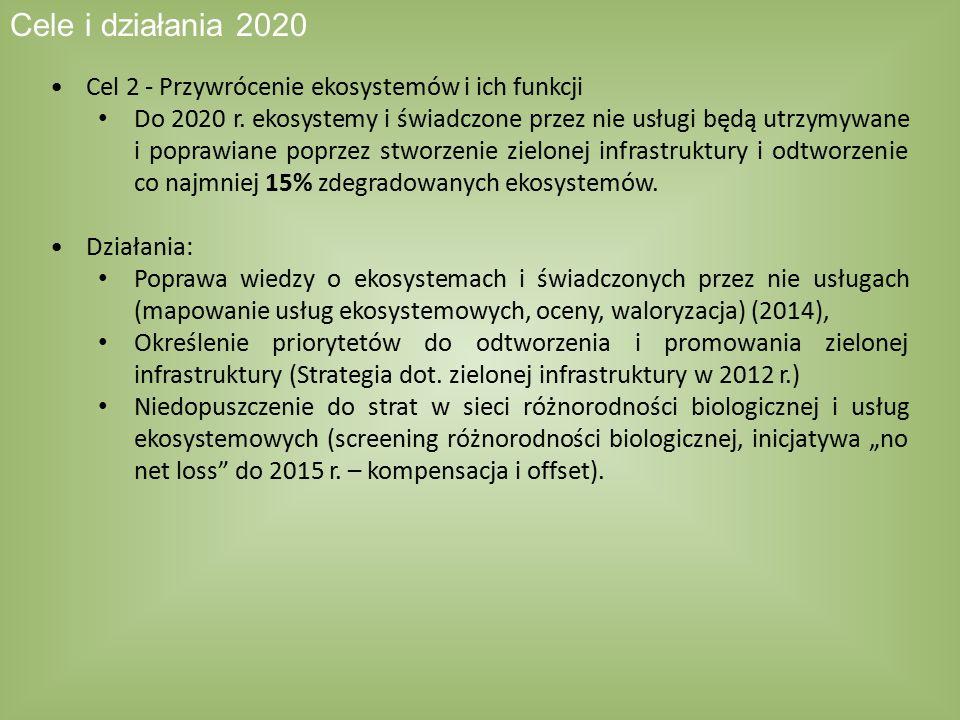 Cel 2 - Przywrócenie ekosystemów i ich funkcji Do 2020 r. ekosystemy i świadczone przez nie usługi będą utrzymywane i poprawiane poprzez stworzenie zi