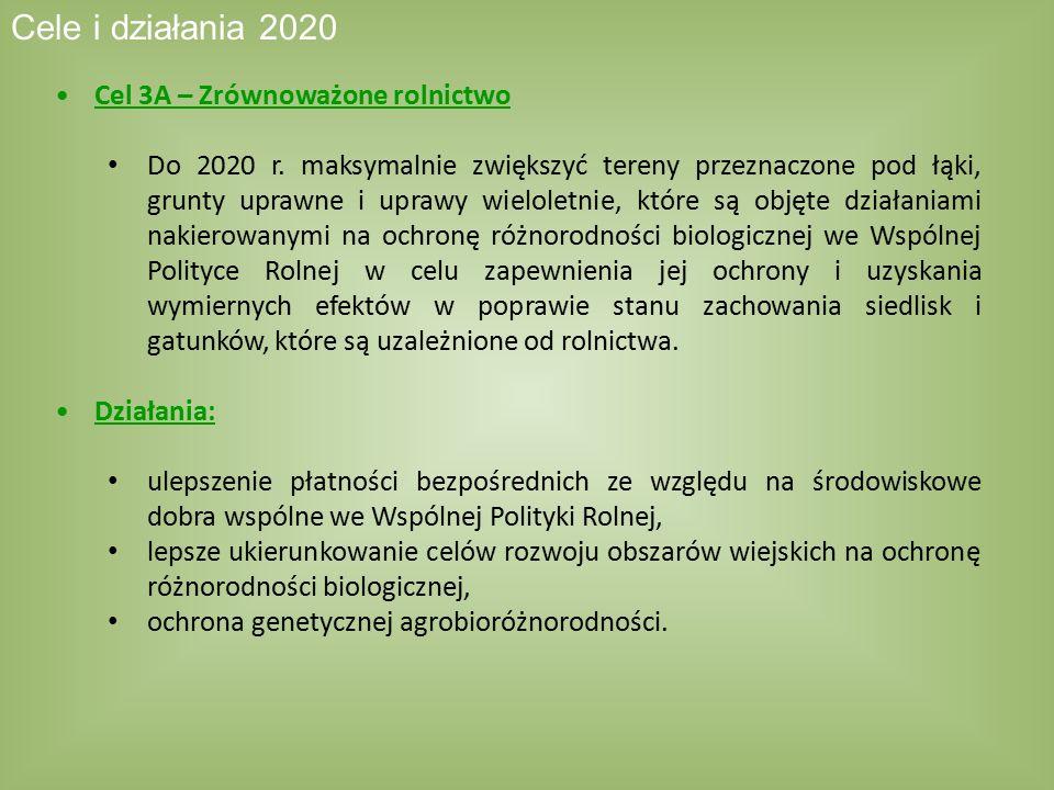 Cel 3A – Zrównoważone rolnictwo Do 2020 r. maksymalnie zwiększyć tereny przeznaczone pod łąki, grunty uprawne i uprawy wieloletnie, które są objęte dz