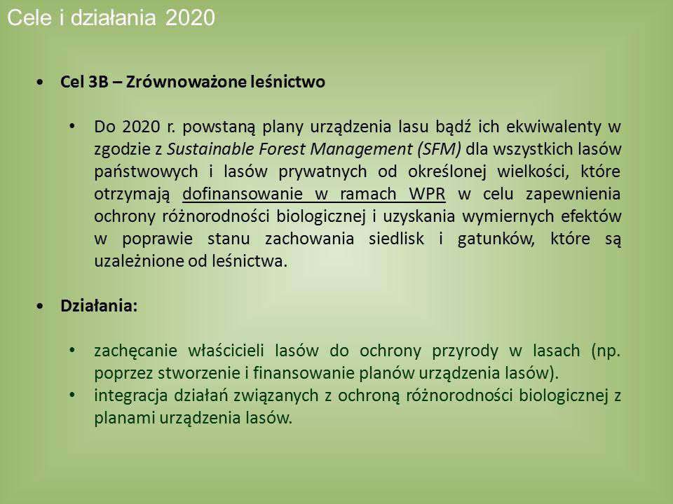 Cel 3B – Zrównoważone leśnictwo Do 2020 r. powstaną plany urządzenia lasu bądź ich ekwiwalenty w zgodzie z Sustainable Forest Management (SFM) dla wsz