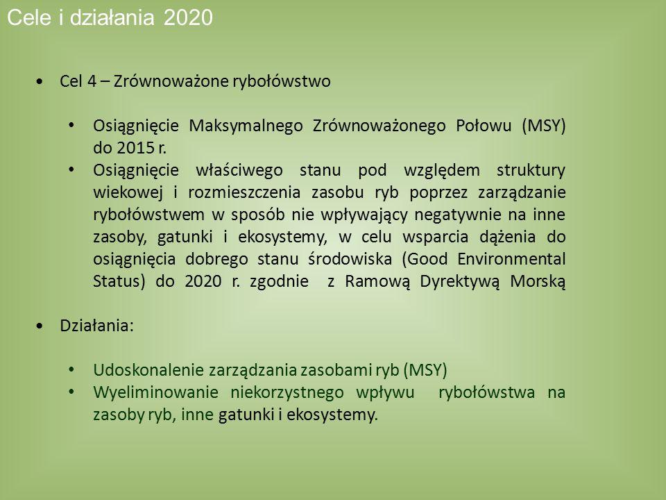 Cel 4 – Zrównoważone rybołówstwo Osiągnięcie Maksymalnego Zrównoważonego Połowu (MSY) do 2015 r. Osiągnięcie właściwego stanu pod względem struktury w