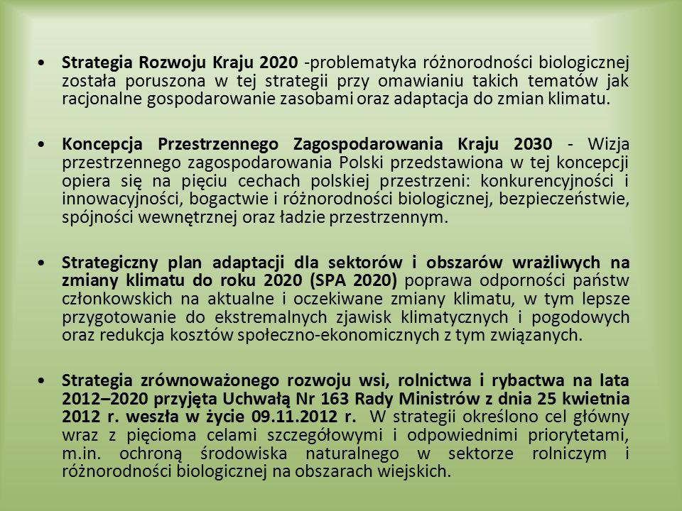 Strategia Rozwoju Kraju 2020 -problematyka różnorodności biologicznej została poruszona w tej strategii przy omawianiu takich tematów jak racjonalne g