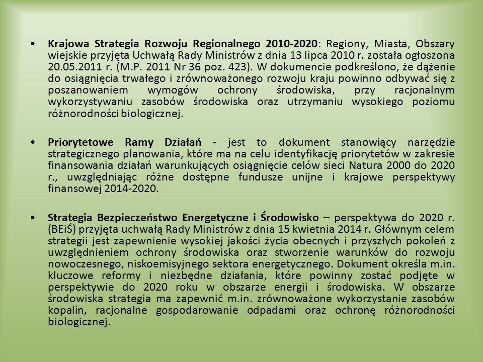 Krajowa Strategia Rozwoju Regionalnego 2010-2020: Regiony, Miasta, Obszary wiejskie przyjęta Uchwałą Rady Ministrów z dnia 13 lipca 2010 r. została og
