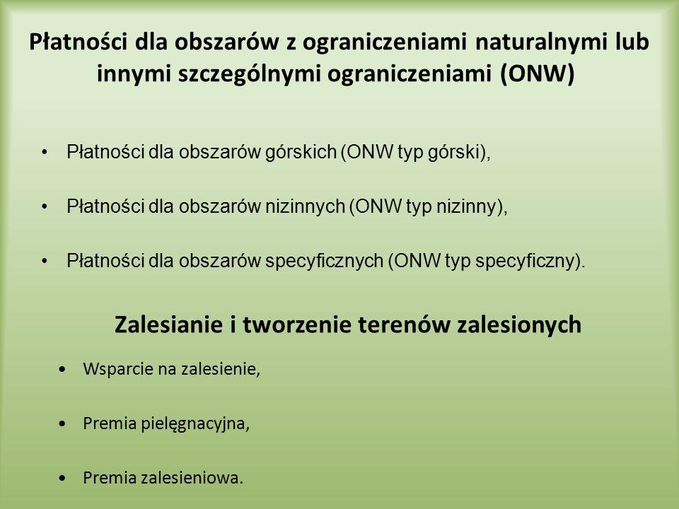 Płatności dla obszarów z ograniczeniami naturalnymi lub innymi szczególnymi ograniczeniami (ONW) Płatności dla obszarów górskich (ONW typ górski), Pła