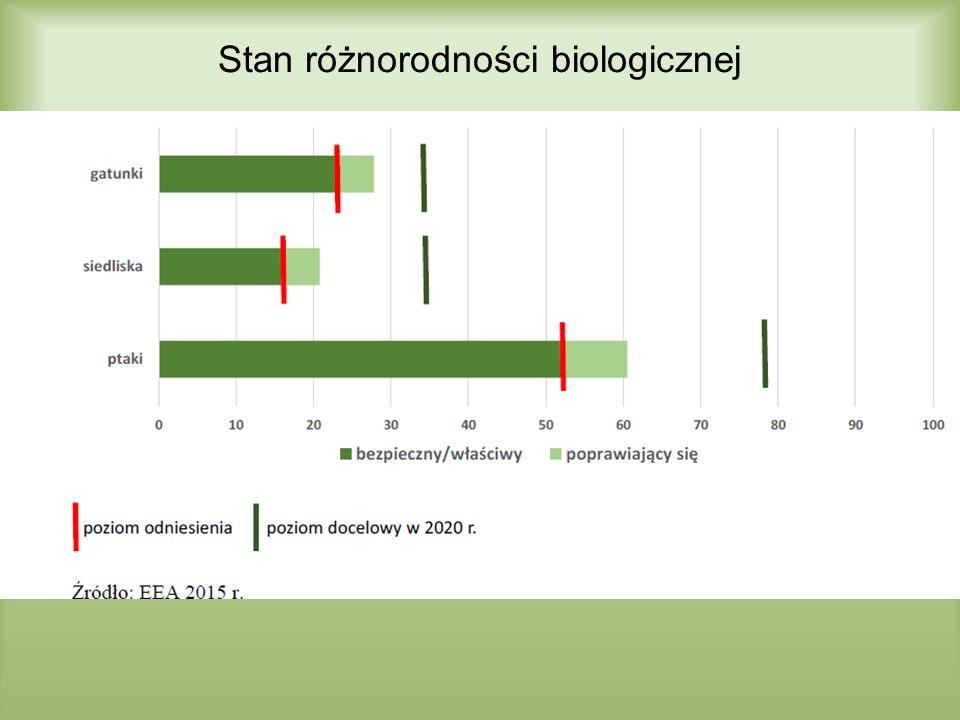 Cel 3B – Zrównoważone leśnictwo Do 2020 r.