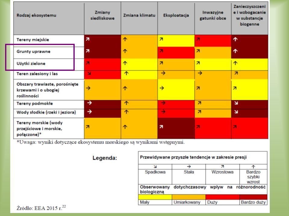 sukcesja wtórna na półnaturalnych łąkach, szuwarach wielkoturzycowych i torfowiskach % monitorowanych działek rolnośrodowiskowych ze zmianami sukcesyjnymi źródło: ITP Falenty, 2014 Czynniki zagrażające różnorodności biologicznej i mające potwierdzenie w danych