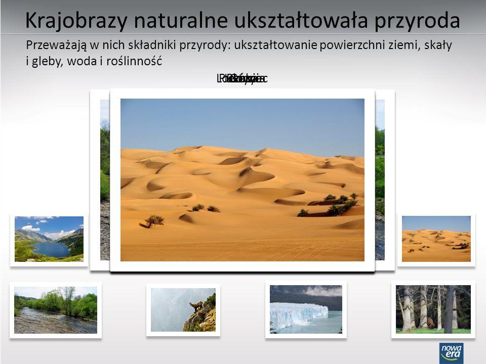 Krajobrazy naturalne ukształtowała przyroda GóryPustyniaRzekaJezioro Przeważają w nich składniki przyrody: ukształtowanie powierzchni ziemi, skały i gleby, woda i roślinność LodowiecLas