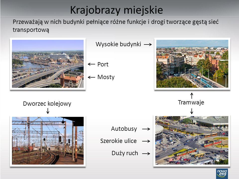 Krajobrazy przemysłowe Przeważają w nich fabryki, kopalnie, stocznie i inne zakłady przemysłowe; mogą być częściami krajobrazów miejskich.