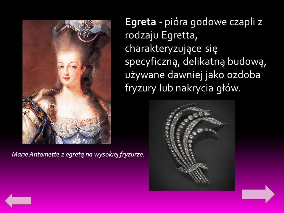 Marie Antoinette z egretą na wysokiej fryzurze. Egreta - pióra godowe czapli z rodzaju Egretta, charakteryzujące się specyficzną, delikatną budową, uż