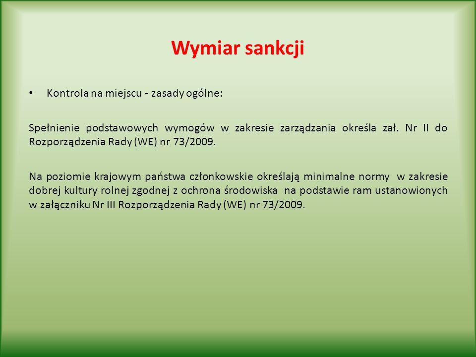 Wymiar sankcji Kontrola na miejscu - zasady ogólne: Spełnienie podstawowych wymogów w zakresie zarządzania określa zał.