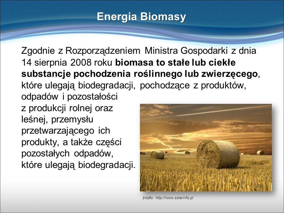 Zgodnie z Rozporządzeniem Ministra Gospodarki z dnia 14 sierpnia 2008 roku biomasa to stałe lub ciekłe substancje pochodzenia roślinnego lub zwierzęce