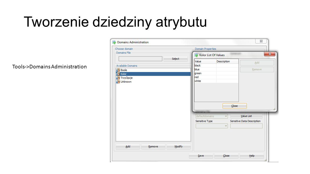 Tworzenie dziedziny atrybutu Tools->Domains Administration