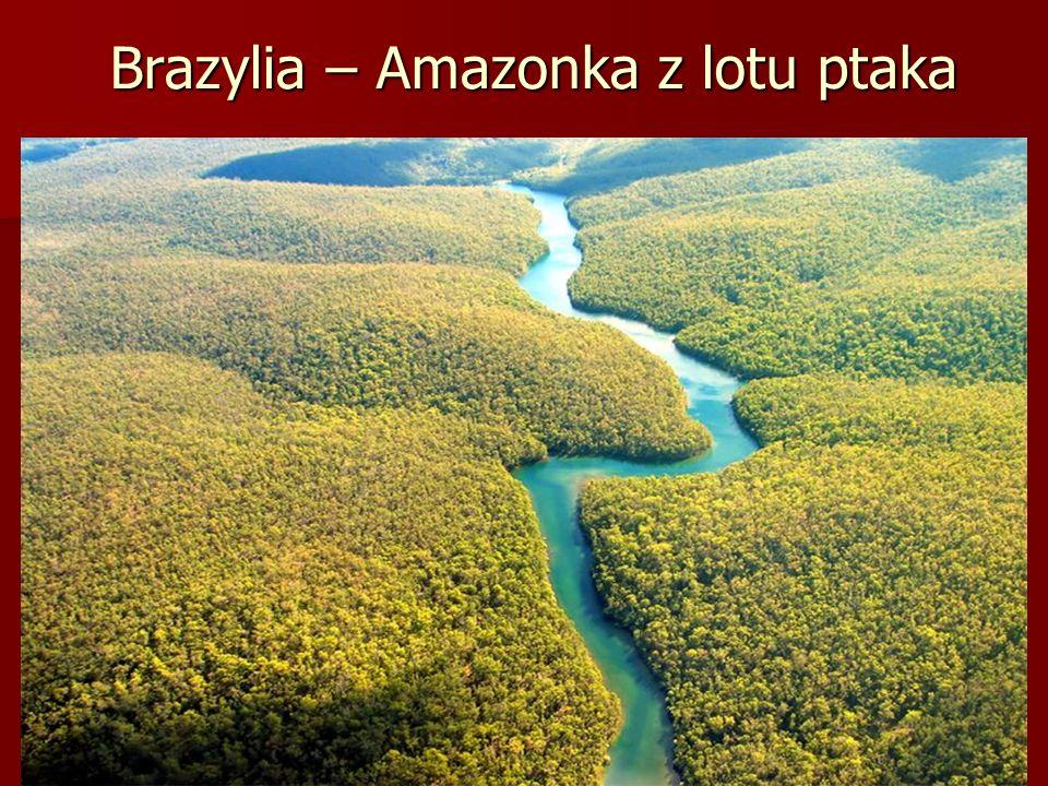 Brazylia – Amazonka z lotu ptaka