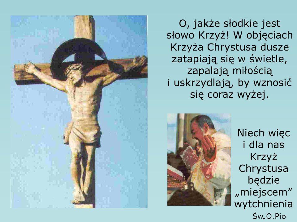 O, jakże słodkie jest słowo Krzyż.