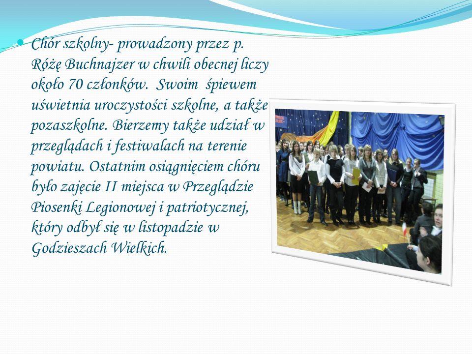 Chór szkolny- prowadzony przez p. Różę Buchnajzer w chwili obecnej liczy około 70 członków. Swoim śpiewem uświetnia uroczystości szkolne, a także poza