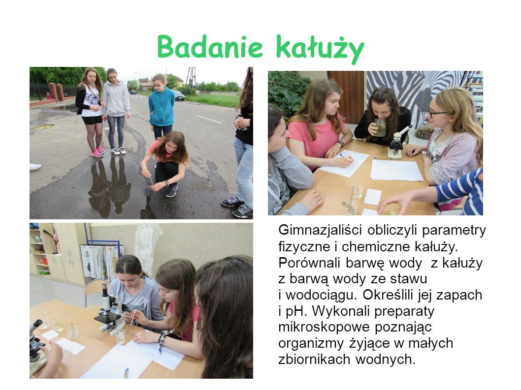 Zajęcia w Autobusie Energetycznym Grupa uczniów szkoły podstawowej i gimnazjum uczestniczyła w zajęciach w mobilny centrum edukacyjno – informacyjnym, które przeciwdziała zmianom klimatu.