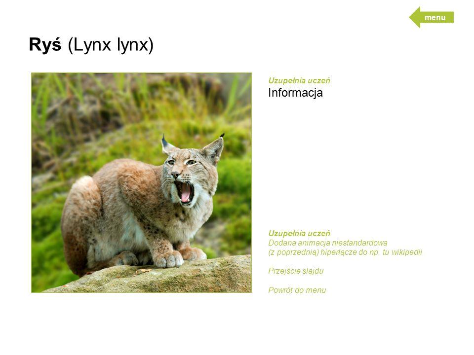 Ryś (Lynx lynx) Uzupełnia uczeń Informacja Uzupełnia uczeń Dodana animacja niestandardowa (z poprzednią) hiperłącze do np.