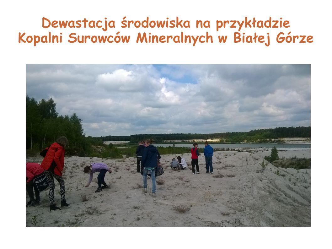 Dewastacja środowiska na przykładzie Kopalni Surowców Mineralnych w Białej Górze