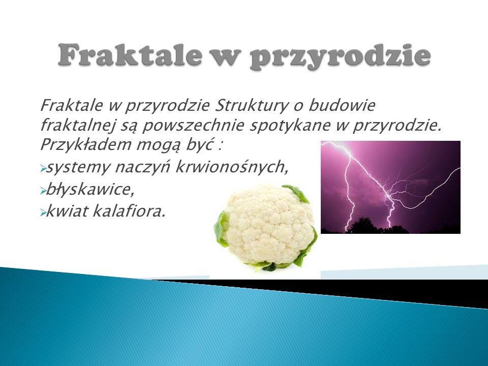 Fraktale w przyrodzie Struktury o budowie fraktalnej są powszechnie spotykane w przyrodzie.