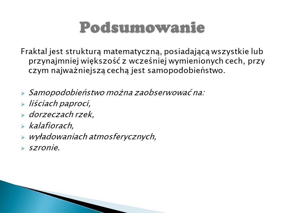 http://zobaczycmatematyke.pl/2015/4_damian_lipinski/zastos owaniefraktali.html http://www.zse- 2.krakow.pl/zse2/pozalekcyjne/matematyka/template1.htm http://www.cen.edu.pl/cen_serwis/userfiles/file/link2/matma/f raktale.pdf http://www.se.pl/styl-zycia/sennik/sennik-blyskawica-burza- znaczenie-snu-blyskawica-burza_176958.html
