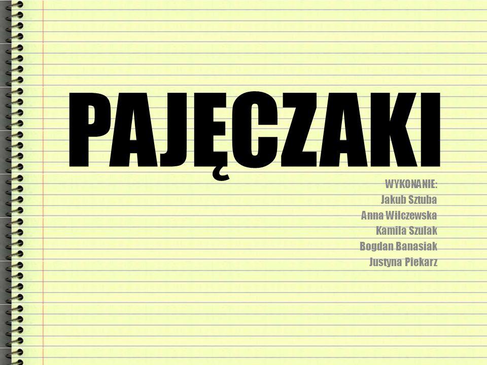 PAJĘCZAKI WYKONANIE: Jakub Sztuba Anna Wilczewska Kamila Szulak Bogdan Banasiak Justyna Piekarz