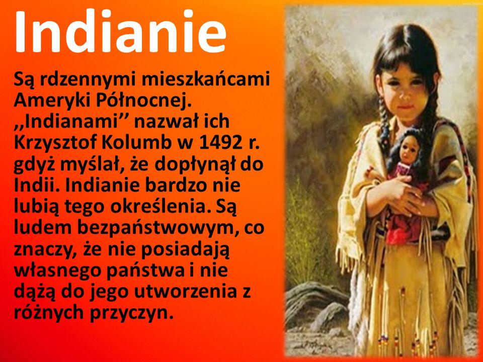 Indianie Są rdzennymi mieszkańcami Ameryki Północnej.,,Indianami'' nazwał ich Krzysztof Kolumb w 1492 r. gdyż myślał, że dopłynął do Indii. Indianie b