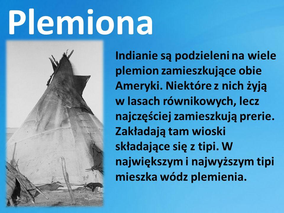 Plemiona Indianie są podzieleni na wiele plemion zamieszkujące obie Ameryki.