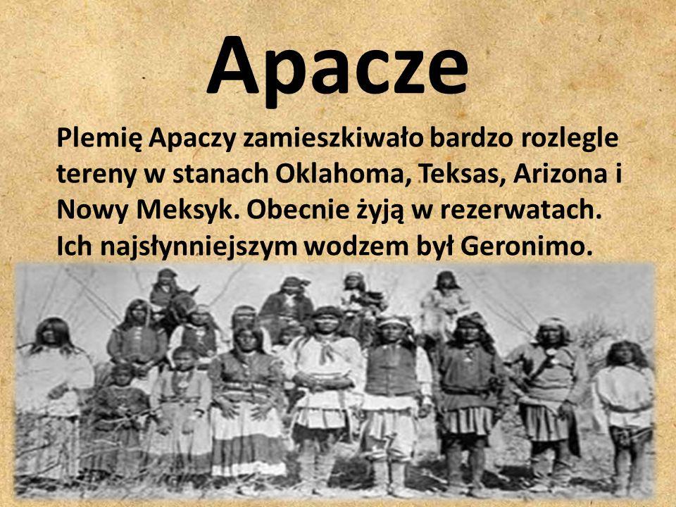 Apacze Plemię Apaczy zamieszkiwało bardzo rozlegle tereny w stanach Oklahoma, Teksas, Arizona i Nowy Meksyk. Obecnie żyją w rezerwatach. Ich najsłynni