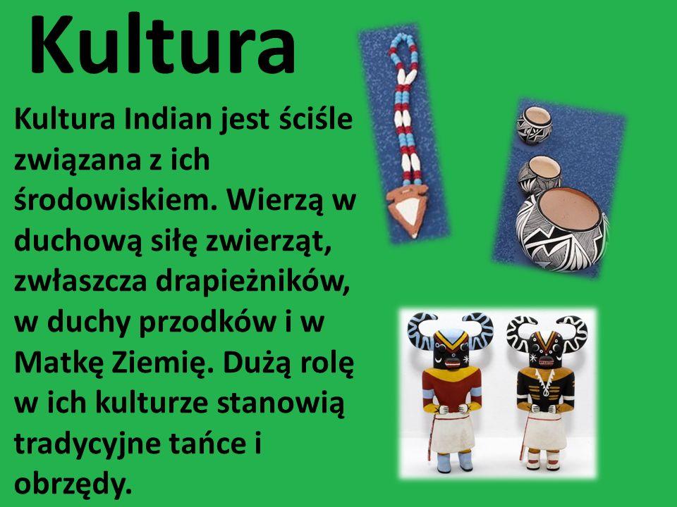 Kultura Kultura Indian jest ściśle związana z ich środowiskiem. Wierzą w duchową siłę zwierząt, zwłaszcza drapieżników, w duchy przodków i w Matkę Zie