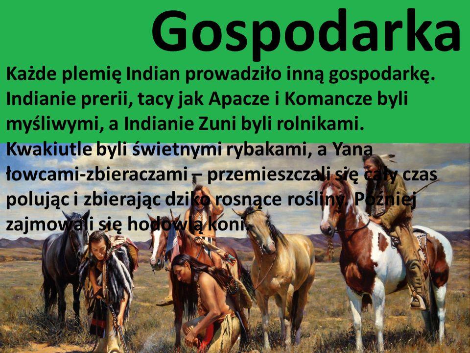 Gospodarka Każde plemię Indian prowadziło inną gospodarkę. Indianie prerii, tacy jak Apacze i Komancze byli myśliwymi, a Indianie Zuni byli rolnikami.